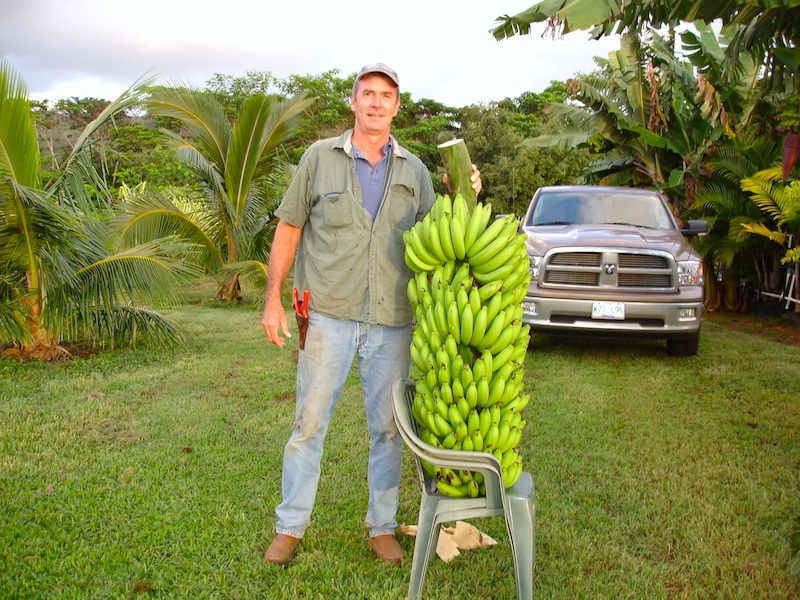 Scott Young, Kipapa Nursery